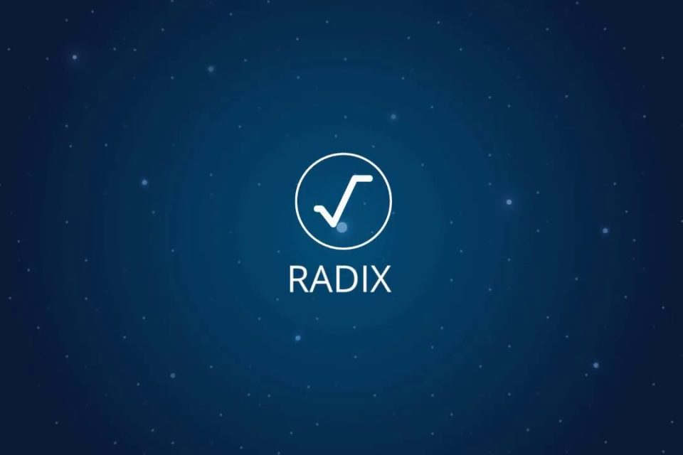 Interview with Radix Team